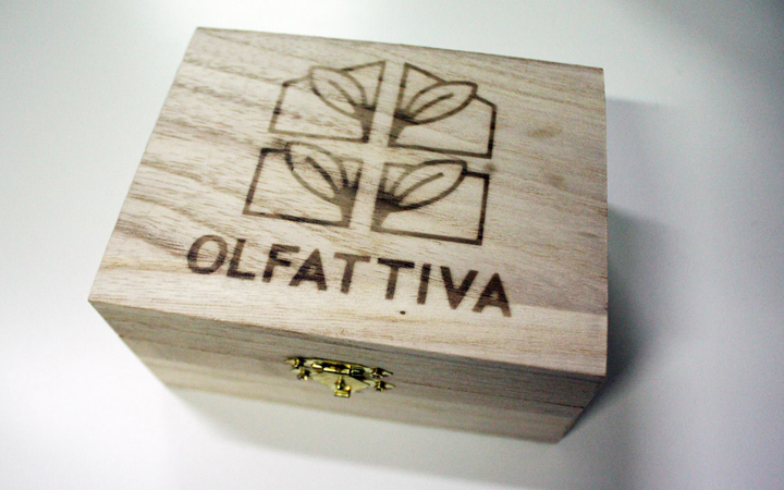 olfattiva_7